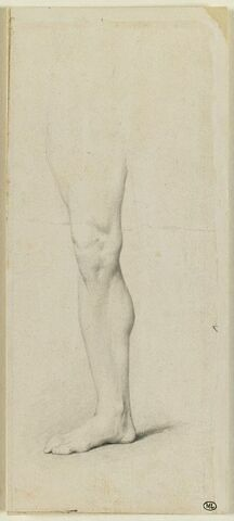 Cuisse, jambe et pied droit d'homme