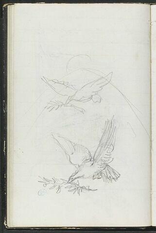 Deux esquisses de colombes tenant un rameau