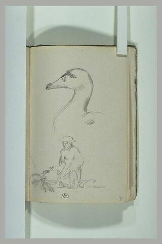 Tête de canard ; figure nourrissant des canards