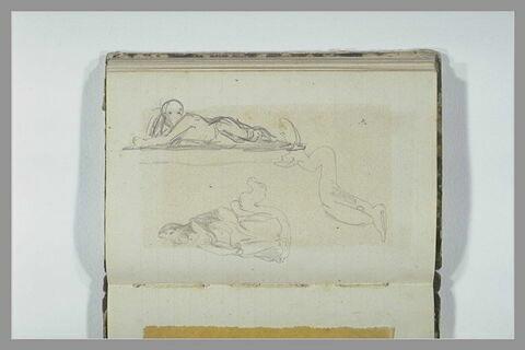 Figure assise ; animal marin stylisé ; figure allongée