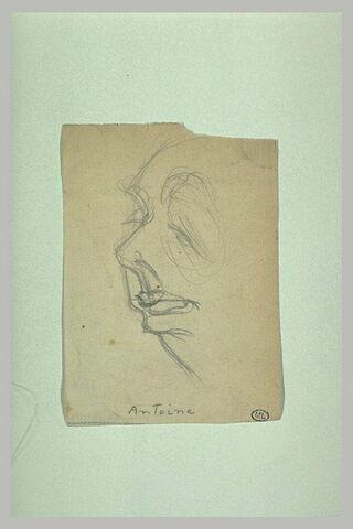 Croquis caricatural d'une tête de trois quarts à gauche