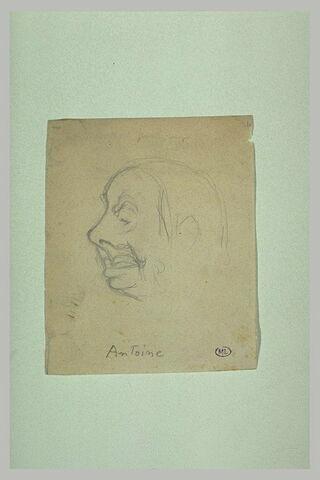 Croquis caricatural d'une tête d'homme de profil à gauche