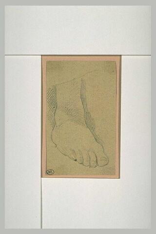 Etude de pied droit