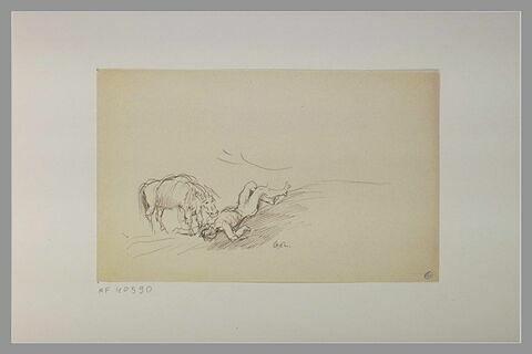 Cheval auprès d'un homme allongé à terre
