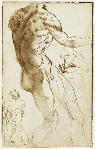 Deux hommes nus et une étude de musculature