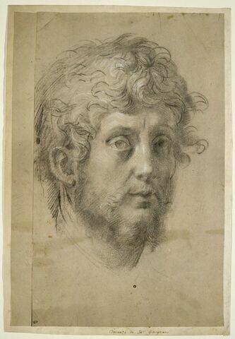 Tête d'homme portant barbe et moustache