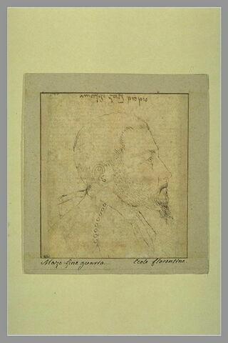 Portrait d'homme barbu, vu de profil et tourné vers la droite