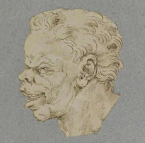 Tête d'homme, de profil, bouche ouverte, motif pour une grotesque
