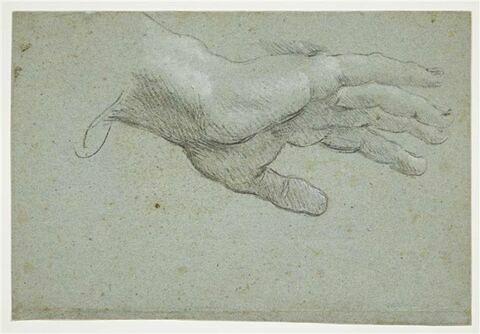 Main droite levée