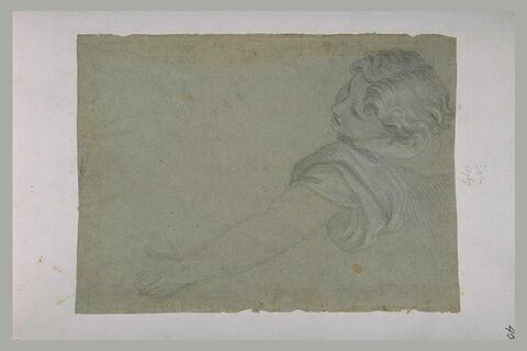Tête et bras gauche d'un ange volant