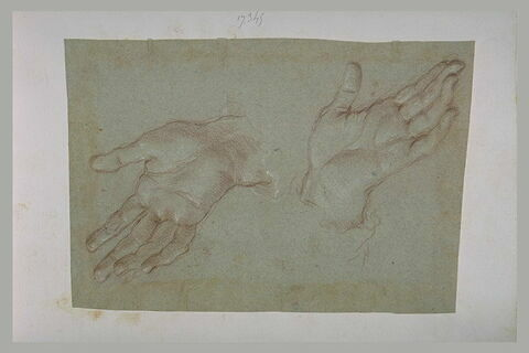 Deux mains ouvertes, en sens inverse
