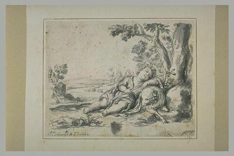Saint Jean-Baptiste enfant endormi sur la Croix