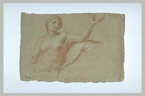 Femme nue, à mi-corps