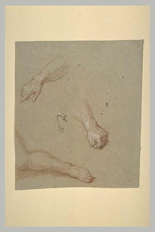 Une jambe et deux mains