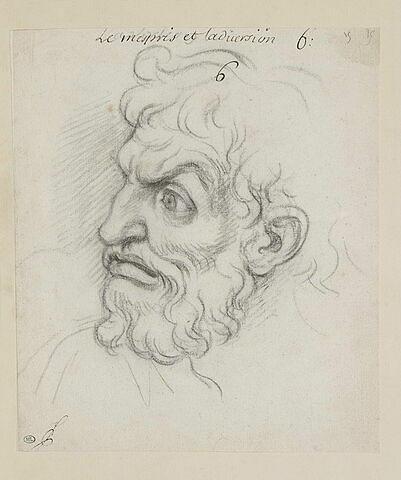 Le Mépris et l'aversion : tête d'homme, de profil