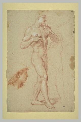 Homme nu, debout ; une tête de profil