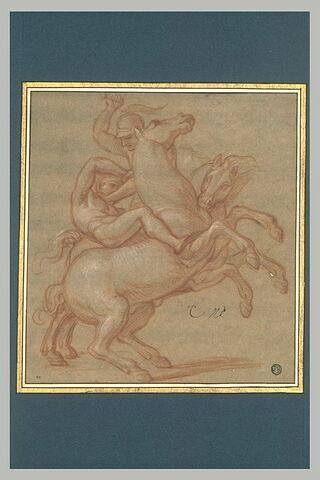 Combat de deux cavaliers