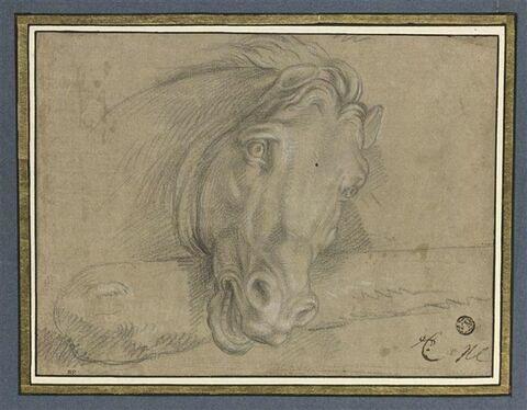 Tête de cheval, reposant sur une massue
