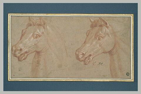 Deux têtes de cheval