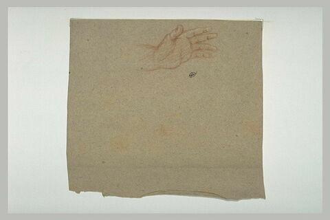 Etude d'une main, vue en dessous