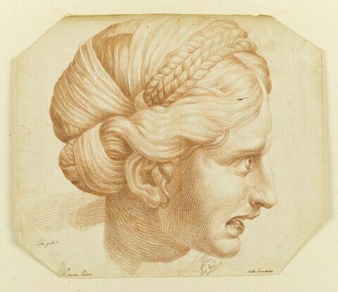 Tête de femme criant, de profil vers la droite