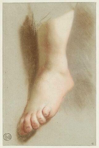 Etude d'un pied nu