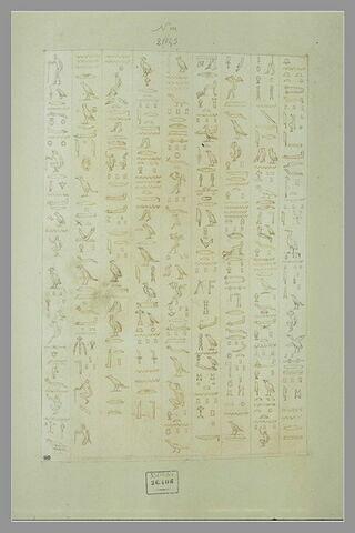 Neuf colonnes d'inscriptions hiéroglyphiques