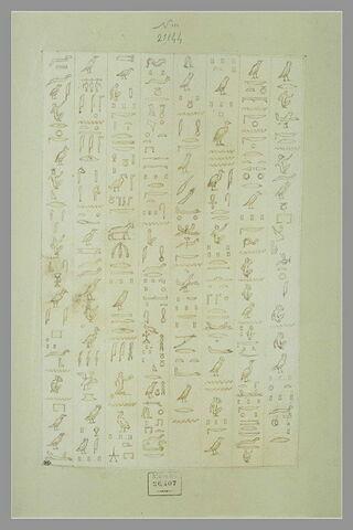 Huit colonnes d'inscriptions hiéroglyphiques