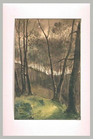 Le bois de Satory à Versailles, 1838