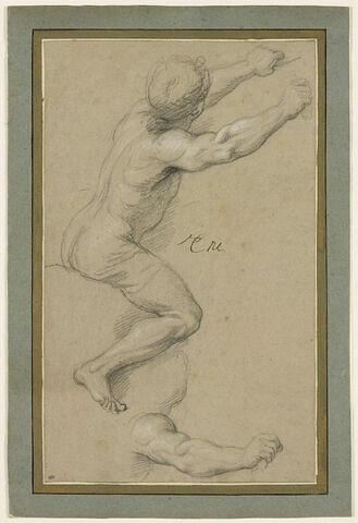 Cavalier, de profil, les deux bras en avant ; bras
