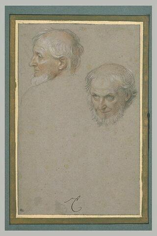 Deux têtes d'homme barbu