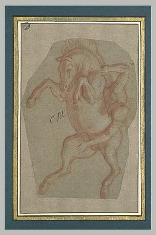 Cavalier nu, tombant d'un cheval cabré et renversé