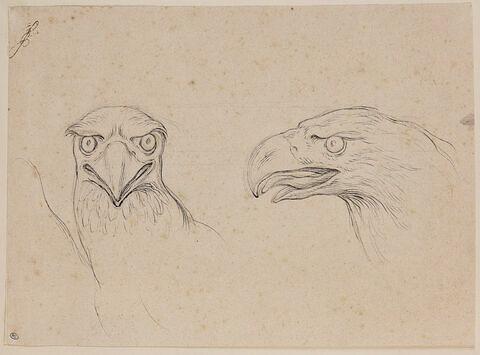 Deux têtes d'aigle