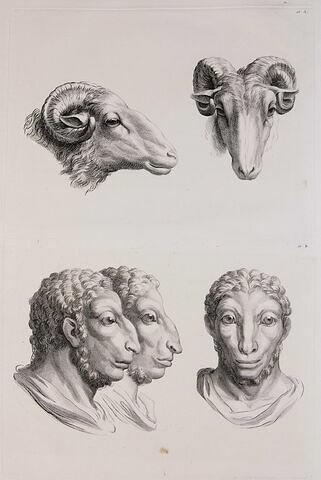 Deux têtes de bélier et trois têtes d'hommes en relation avec le bélier