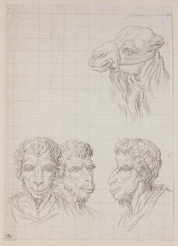Une tête de chameau et trois têtes d'hommes en relation avec le chameau