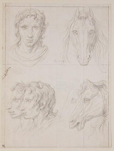Trois études de têtes de cheval et trois études de têtes d'hommes...