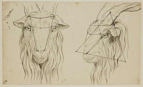 Deux têtes de bouc, l'une de face et l'autre de profil