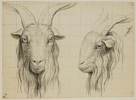 Deux têtes de bouc, l'une de profil et l'autre de face