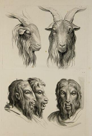 Deux têtes de bouc et trois têtes d'homme en relation avec le bouc