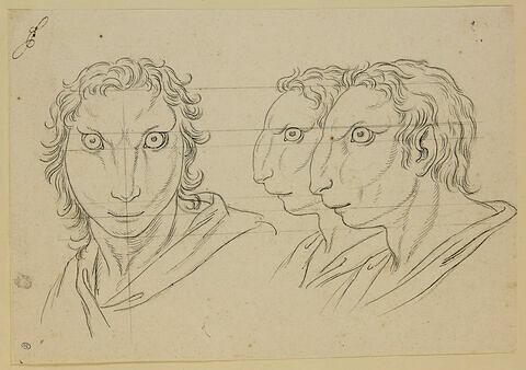 Trois têtes d'hommes en relation avec le lièvre