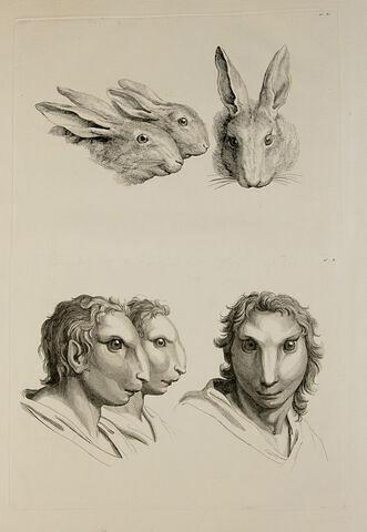 Trois têtes de lièvres et trois têtes d'hommes en relation avec le lièvre