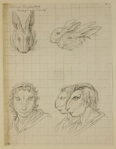 Deux têtes de lièvre, une tête de lapin et trois têtes d'hommes