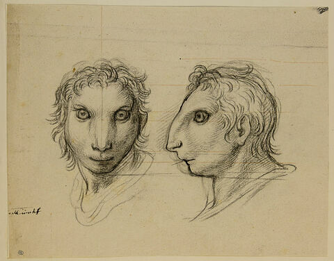 Deux têtes d'hommes en relation avec le lièvre