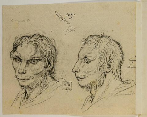 Deux têtes d'hommes en relation avec le loup-cervier