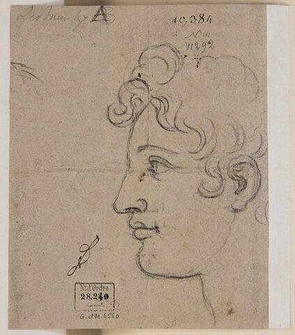 Profil de la tête de Marc Aurèle