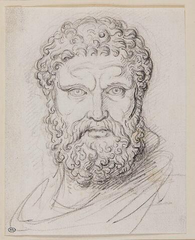 Tête d'Hercule