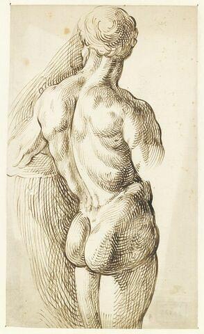 Demi-figure d'homme nu, vu de dos