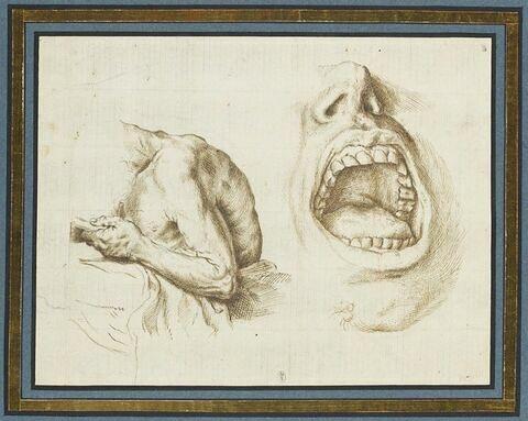 Etude d'une figure vue de profil et à mi-corps et d'une bouche ouverte