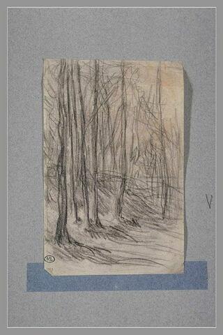 Sous- bois, étude pour 'Le Berger à l'ombre' de 1857