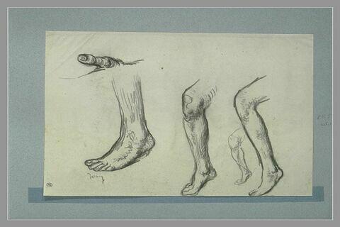 Etude d'un pouce, d'un pied et de trois jambes nus